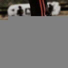 High Quality Fashion Casual Shoes Men Breathable Air Mesh Sneakers Sport Shoes Walking Running Men Flats Outdoor Footwear 2019 Jichi/hoodmat.com