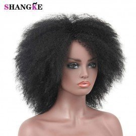 Afro Synthetic Wigs Short Afro Kinkys Curly Hair Fluffy Hair Soft Kinky Straight Wigs Heat Resistant African American Wigs Shangke/hoodmat.com